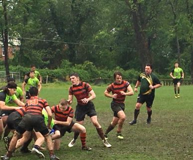 Tim Rugby